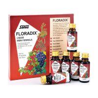 Salus Floradix Liquid Iron Formula 10x20ml